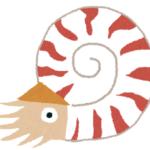 深海生物!オウムガイの殻の構造について!