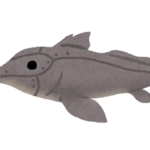 深海魚ギンザメの種類ってどれくらいいる!?