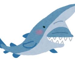 ミツクリザメ 歯