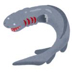 深海に生息するサメ「ラブカ」が見れる水族館は!?