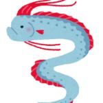 立ち泳ぎをする!リュウグウノツカイの泳ぎ方について !